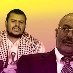 الشيخ خليفة: التلاحم المصري سيدحر الإرهاب