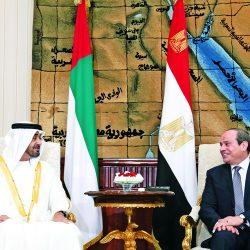 الإمارات ومصر : يدٌ واحدة لتحصين المنطقة