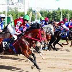 8 خيول تتنافس على كأس الشيخ خليفة بن زايد بروسيا
