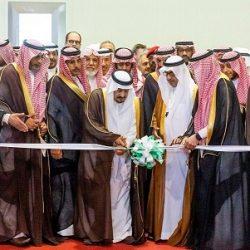 دبي عاصمة عالمية لليخوت الفاخرة