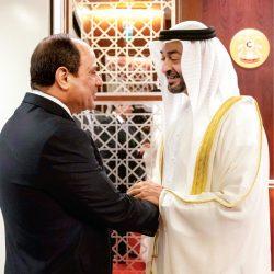 الشيخ محمد بن زايد يستقبل السيسي في الإمارات