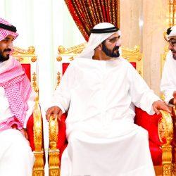 رسم ملامح جديدة لتنافسية الإمارات