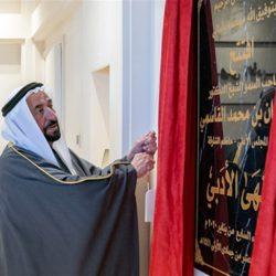 الشيخ محمد بن راشد ومحمد بن زايد يعتمدان الهوية الإعلامية المرئية لدولة الإمارات