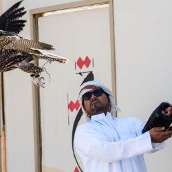 """الملك محمد السادس يدعم """"التسريع الصناعي"""" بتدشين """"مدينة الابتكار"""" بأكادير"""