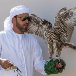 قوست يستعيد صدارة دوري الإمارات للصيد بالصقور