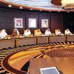 مجلس الوزراء الإماراتي يعتمد قرار بخصوص نشر المعلومات الصحية