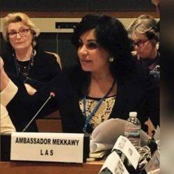 رئيس بعثة الجامعة العربية في روما: الإمارات نموذج عالمي يحتذى في العمل الإنساني