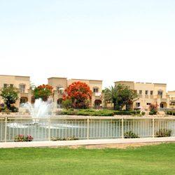 مجلس السفر والسياحة العالمي: قطاع السياحة يدعم اقتصاد الإمارات بعد كورونا