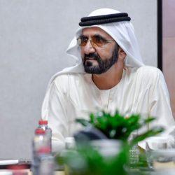 دولة الإمارات تبحث وهولندا تجاوز تحديات «كورونا»