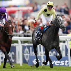 خيول دولةالإمارات جاهزة لتحدي «كورونيشن كب» في بريطانيا