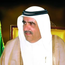 خيول الشيخ حمدان بن راشد انتصارات متواصلة في المضامير العالمية