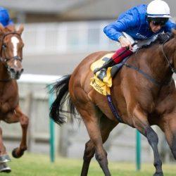 خيول الإمارات تخوض التحدي في اليوم الثاني لمهرجان «جولاي كب»