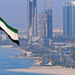 دولة الإمارات أكبر مستثمر في المنطقة العربية 2019