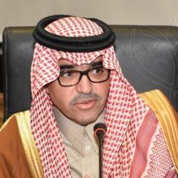 4 قرارات عززت جهود الإمارات في الحوكمة خلال 2020