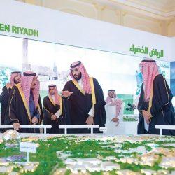 انطلق المؤتمر الأول للسينما العربية والفرانكوفونية