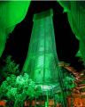 أبوظبي تنير أبرز معالمها باللون الأخضر احتفاءً بأسبوع الاستدامة