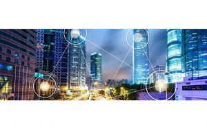«كيرني»: دولة الإمارات تشارك في صياغة التوجهات العالمية