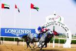 86 جواداً في كأس حمدان بن راشد للخيول العربية اليوم