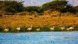 تعرّفوا على أجمل المحميات الطبيعية في سلطنة عُمان