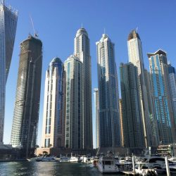 11 شركة إيطالية ناشئة تطور مشاريعها المستقبلية في الإمارات