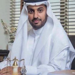 """جامعة الإمارات تدشن """"برنامج التعليم التنفيذي"""" للعام 2021"""