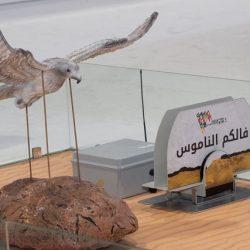 مركز حمدان بيطلق جدول اليطولات في ابوظبي للصيد والفروسية